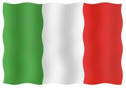 KANSAINV.LIPPU ITALIA 20X30