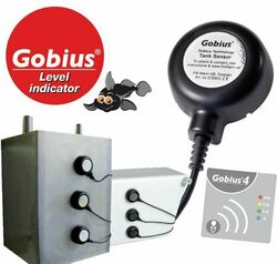 GOBIUS4 - SEPTI